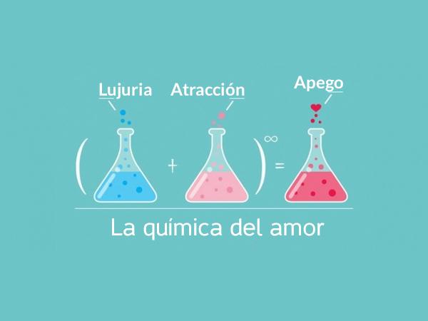 la_quimica_del_amor
