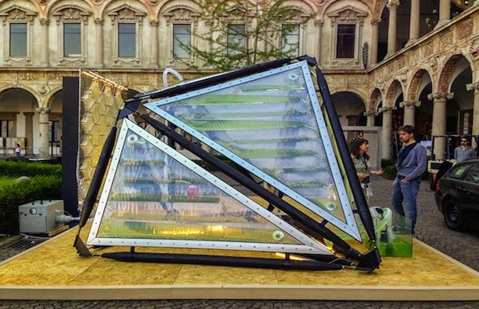 Urban-Algae-Canopy-proyecto-