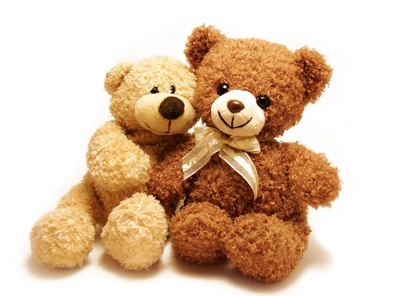teddy_bear_amazing_best_wallpapers_images