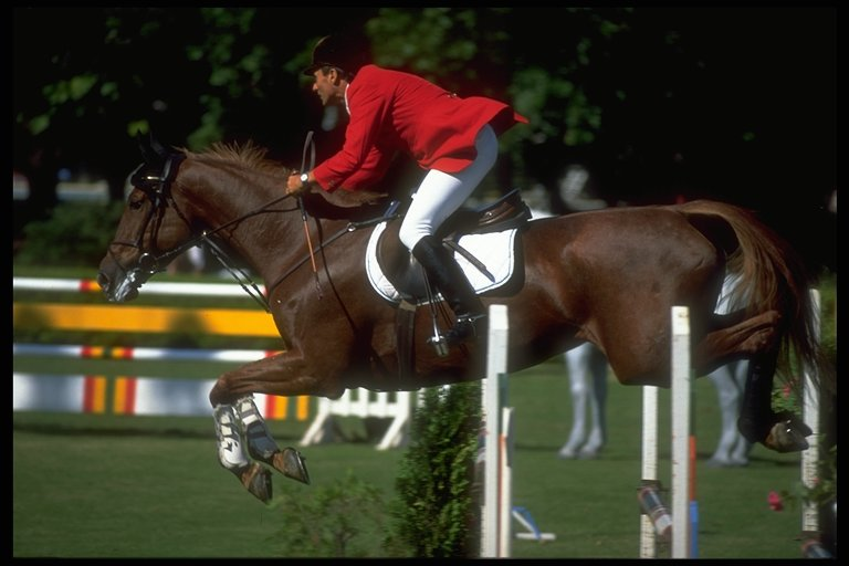equitacion-0283