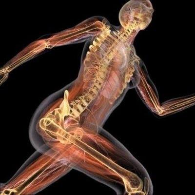 energía cuerpo humano