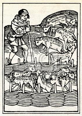 draving-medieval-pastor-con-las-ovejas-400-33470376