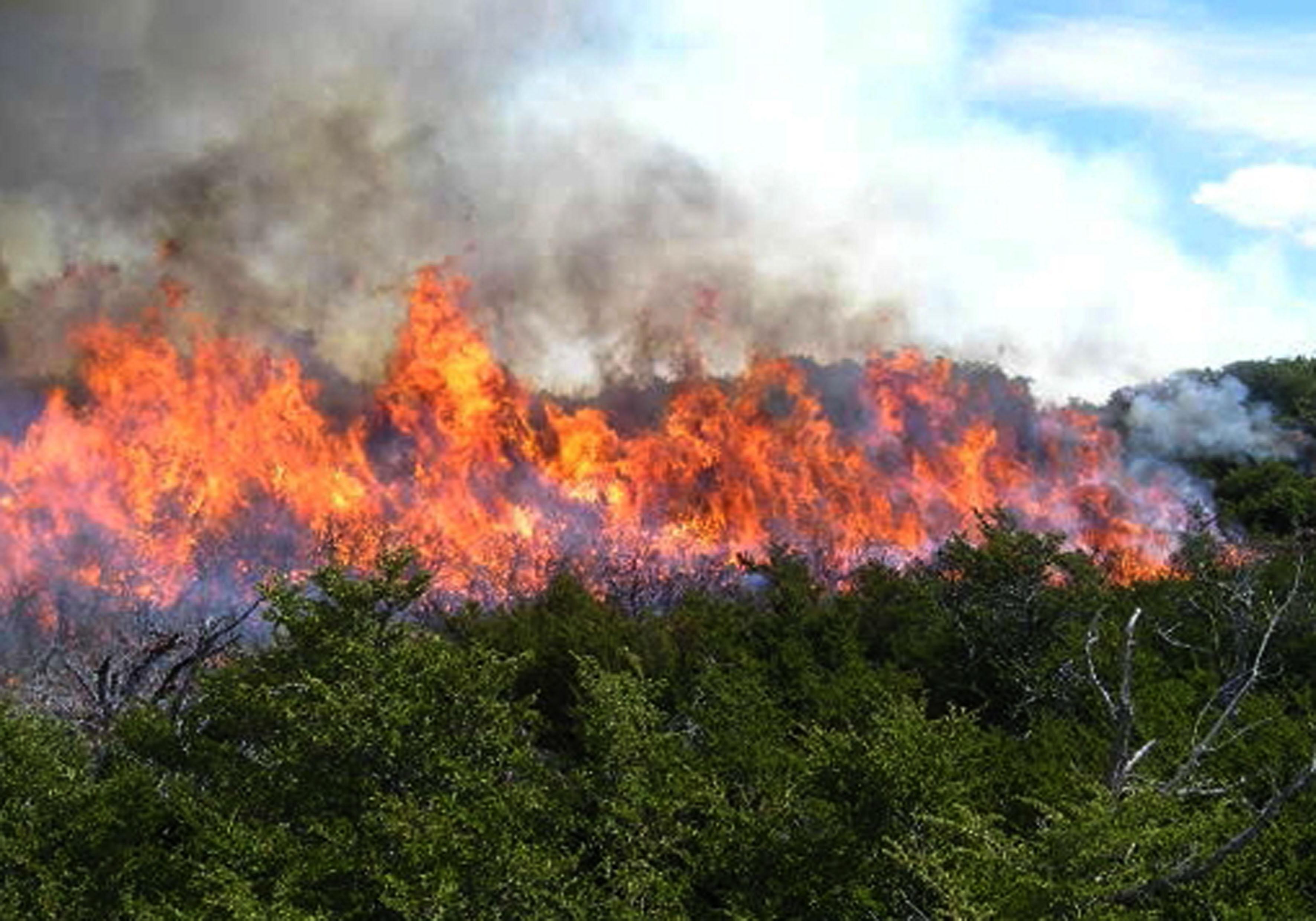 G12041147.JPG MÉRIDA, Yuc.-Incendio-Yucatán. Alrededor de 390 incendios se han registrado en Yucatán resultado de las altas temperaturas, así lo dio a conocer el secretario de Desarrollo Urbano y Medio Ambiente, Eduardo Batllori. EGV. Foto: Agencia EL UNIVERSAL.