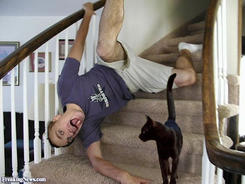 Black-Cat-Causes-Man-to-Fall-Down-the-Stairs--23777