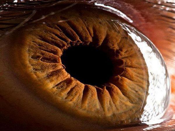 Ojo por ojo, ojo al cuadrado