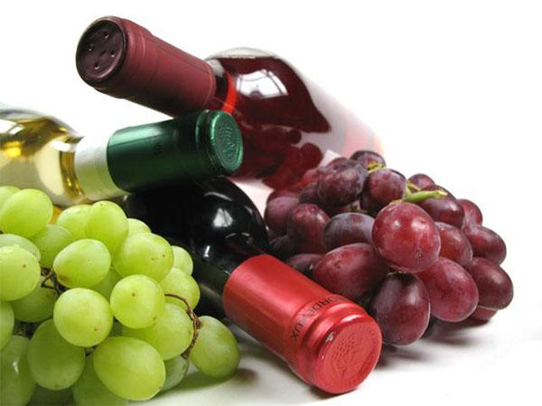 Vinos: tipos de uvas y sus características