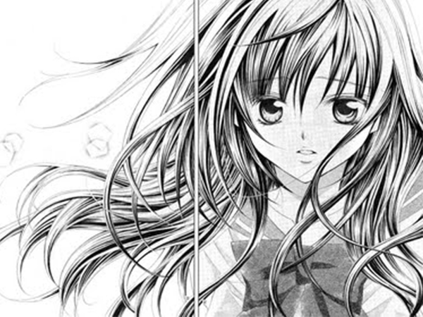 Manga, el comic japonés