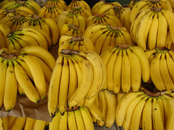 El plátano y sus beneficios