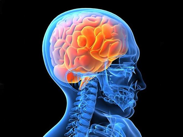 El cerebro de las personas positivas y negativas