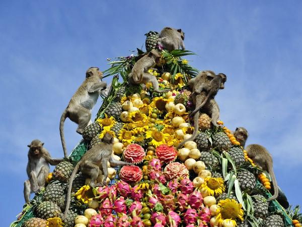 buffet monos