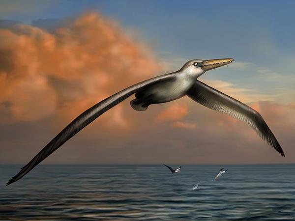 El ave extinta más grande de la historia