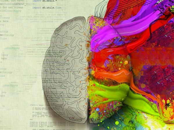 El cerebro y la apreciación del arte