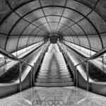 La simetría de un mundo asimétrico