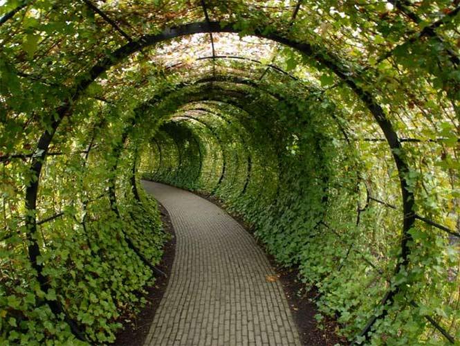 El jardín más grande del mundo