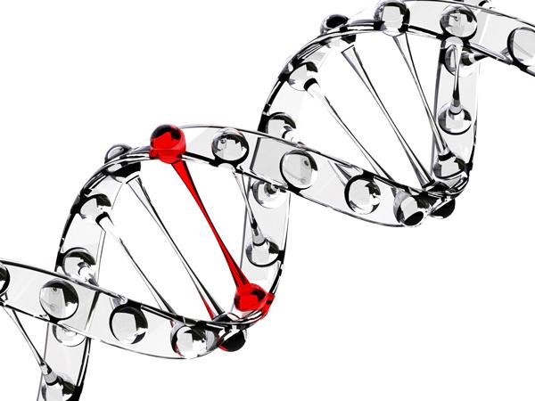 Los genes en las enfermedades mentales
