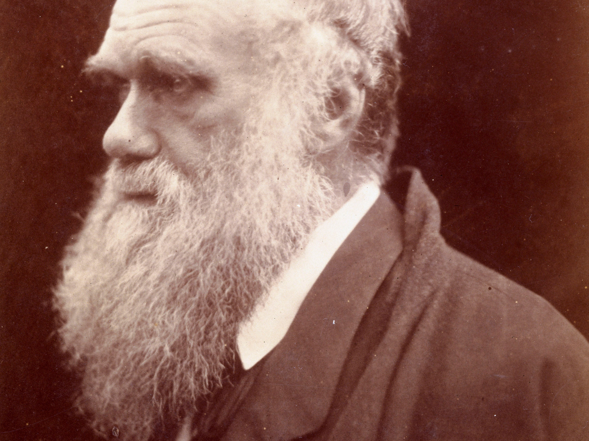 Charles Darwin, English naturalist