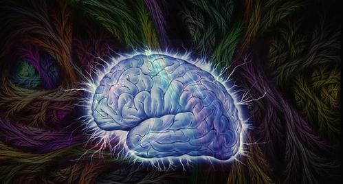 Atiende a tu cerebro: NUNCA detiene su desarrollo