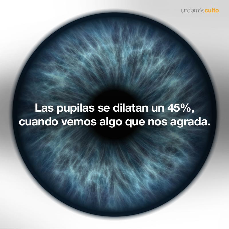 Dilatación pupilas