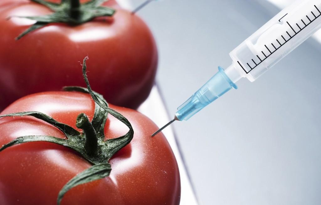 quimicos en alimentos