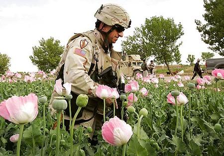Una cortina de humo para disimular el control de la fuente más importante de opio en el mercado negro internacional: AFGANISTÁN