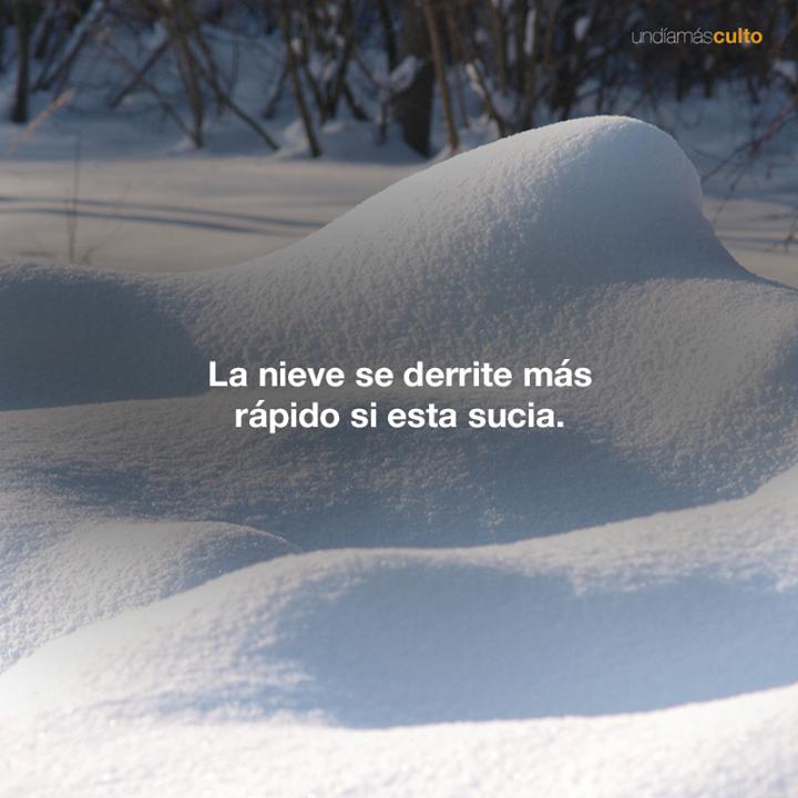 Nieve sucia