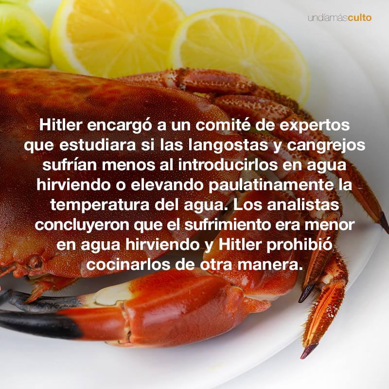 Hitler/ langostas y cangrejos