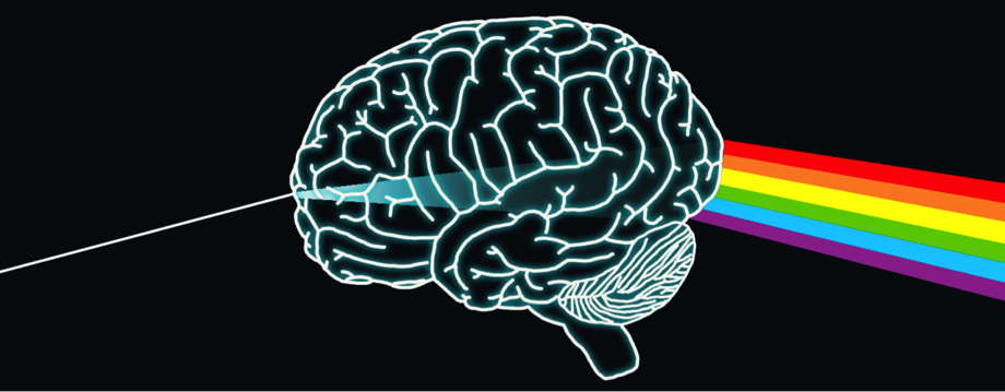 Proteína PTBP1, ¿el origen de la inteligencia humana?