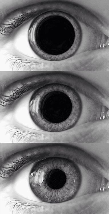 ojos3