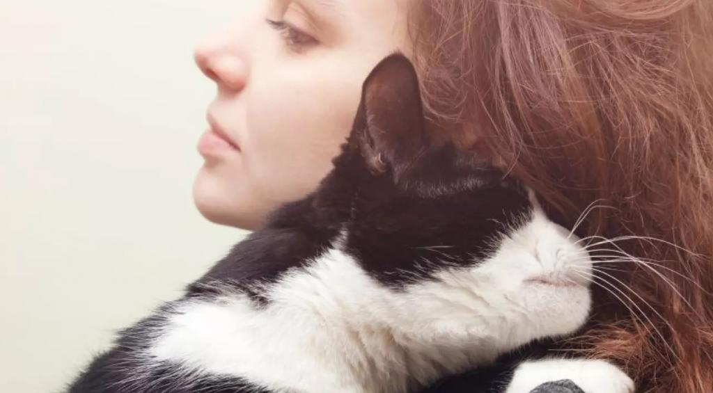 Animales que mejoran la salud