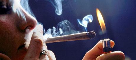 Cannabis: Política y prohibición