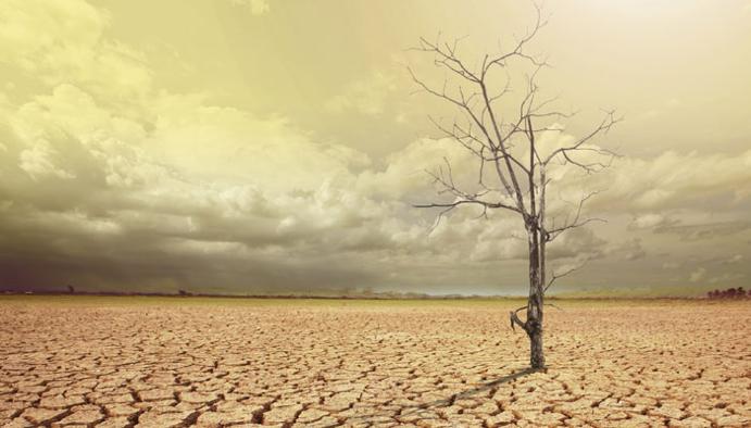 La Tierra sobrepasa el límite de uso de recursos naturales