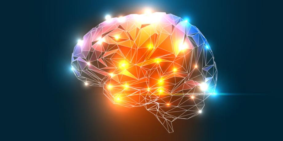 ¿Nuestro cerebro es capaz de predecir el futuro?