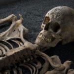 ¿Cuánto tarda un cuerpo en descomponerse por completo?