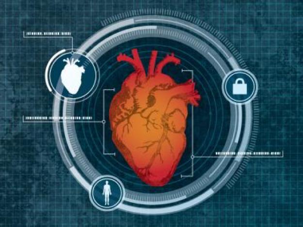 Nuevo sistema de seguridad usa al corazón como contraseña