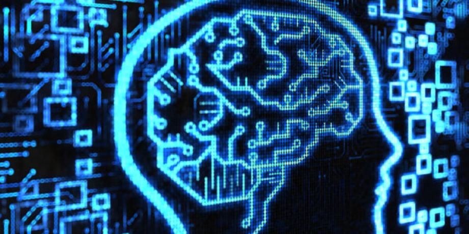 Conectan cerebro a internet en tiempo real