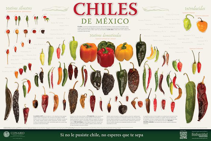 El chile también define al mexicano