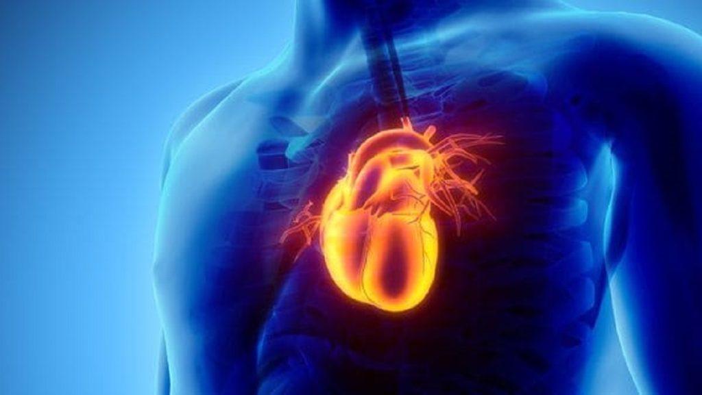 La inteligencia superior del corazón