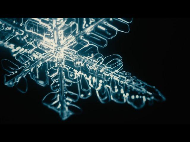 Sobre la nieve y el caos