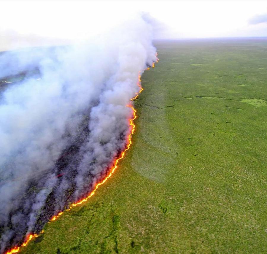 Del Amazonas que arde en intereses
