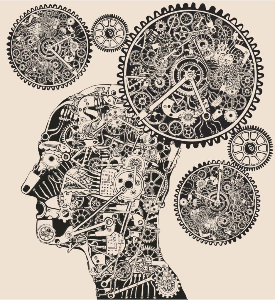 Cronobiología: ciclos biológicos