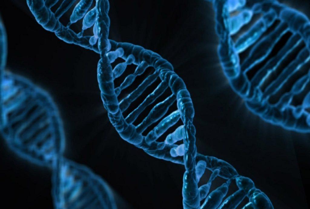 La genética y la felicidad