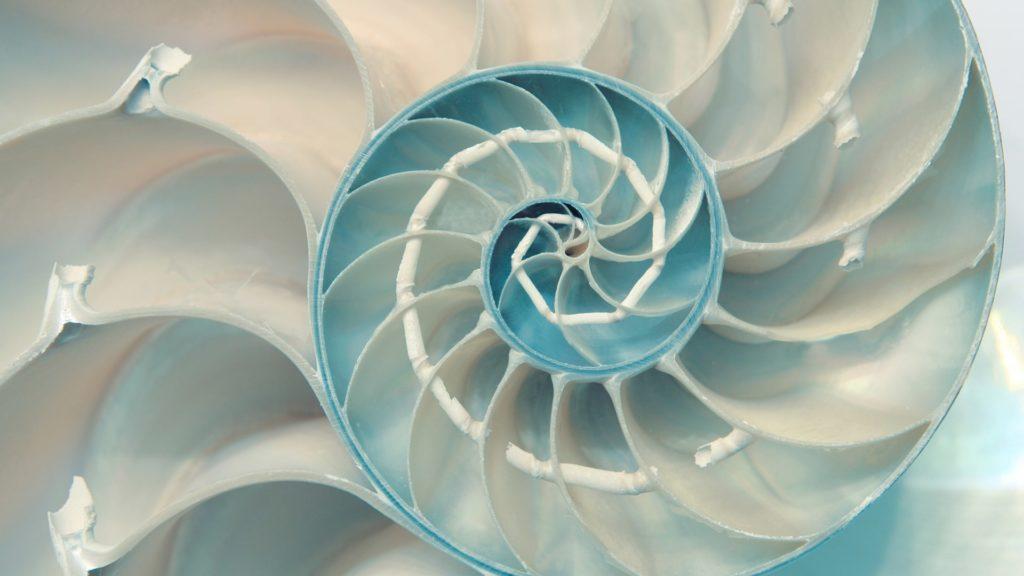 Fibonacci en la poesía